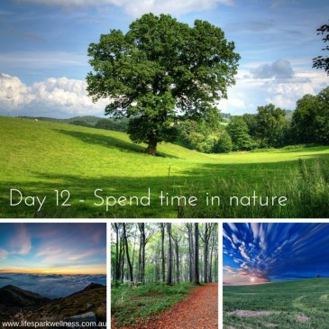 Winter Wellness Challenge  Day 12 – Spend time in nature