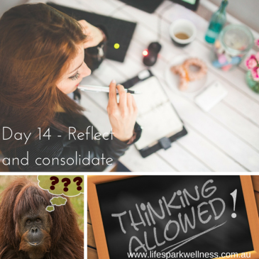 Winter Wellness Challenge Day 14 – Reflect and consolidate