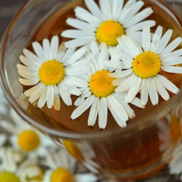 Recipe (relaxing chamomile): Chamomile Peach Iced Tea